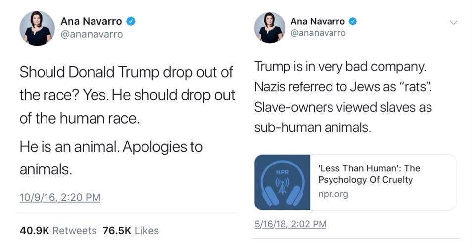 Ana Navarro then and now