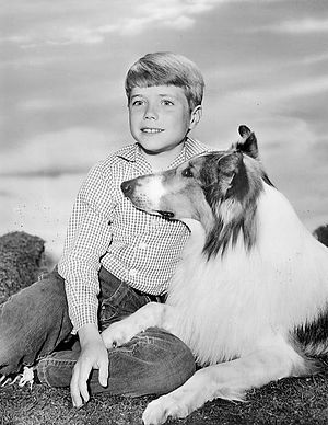 Jon Provost and Lassie